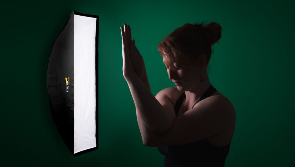 Portrait Lighting Hack: How to Save Yourself $100