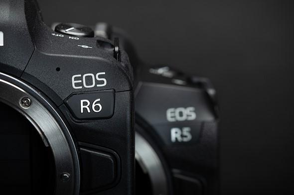 Canon EOS R6: more than a mirrorless 6D, more interesting than EOS R5