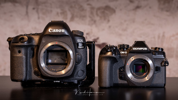 Trying Out an Olympus OM-D: Why Are These Cameras Not That Popular?