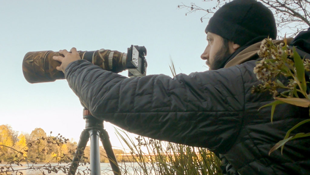 Sony a7S III Review for Filming and Photographing Wildlife