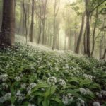 Landscape Photographer of the Year winners named