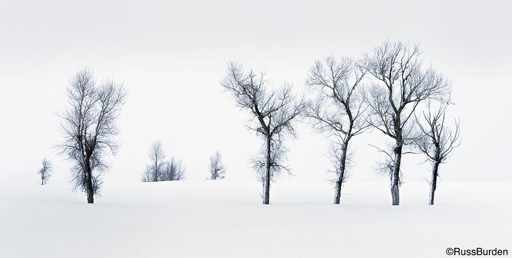 Capture Moody Snow Scenes